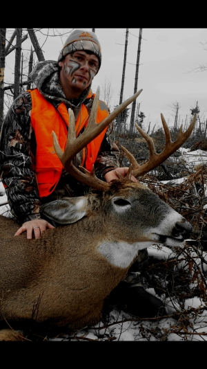 whitetail deer hunting in New Brunswick, Canada